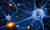 learning-and-neuroplasticity-in-the-brain-759x450
