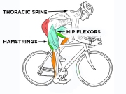 cyclingmuscles